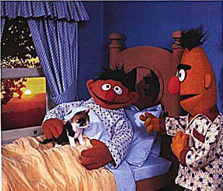 Bert Und Ernie Gifs Bilder Bert Und Ernie Bilder Bert
