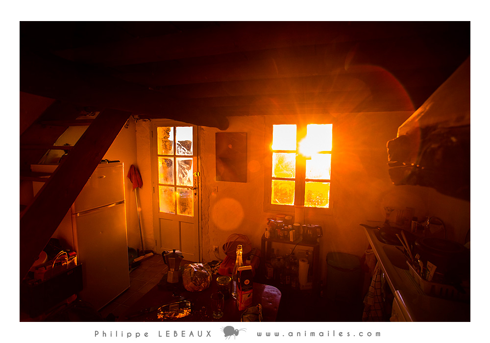 """Au petit matin, à l'intérieur de la maison """"Marie"""""""