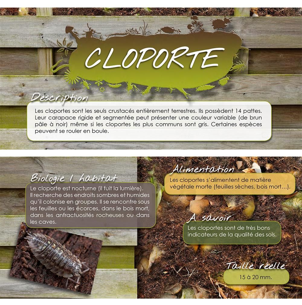 Etiquette recto/verso jeux sur les petites bêtes du compost