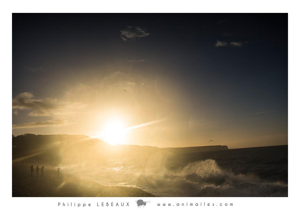 Couché de soleil sur la plage de Fécamp