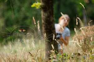 Mâle de Lucane cerf-volant en vol avec personnage féminin en arrière plan
