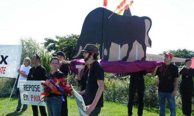 Mimizan : les taureaux massacrés le 25 août ont eu leur procession mortuaire