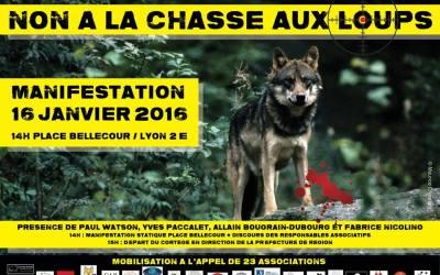 Grande mobilisation inter-associative contre la chasse aux loups Lyon, le 16 janvier 2016