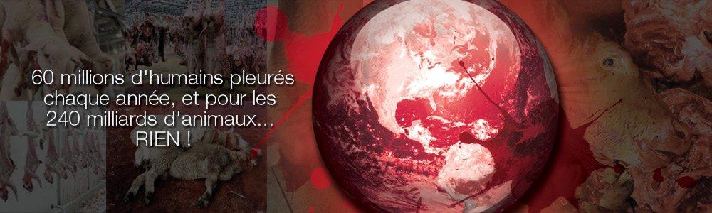 En 2015, 85 milliards d'animaux terrestres tués pour la consommation humaine. 1,5 milliard en France.