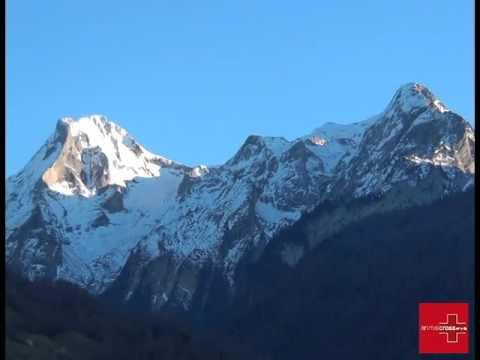 Chevaux de Bious Artigues sauvés en montagne (nov 15) : les dessous de l'affaire