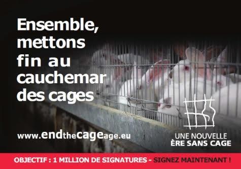 Mettons fin à l'élevage en cage !