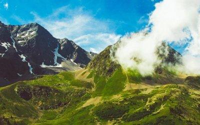 Vers de nouvelles relations avec la nature : II/ Sanctuarisons d'urgence la nature