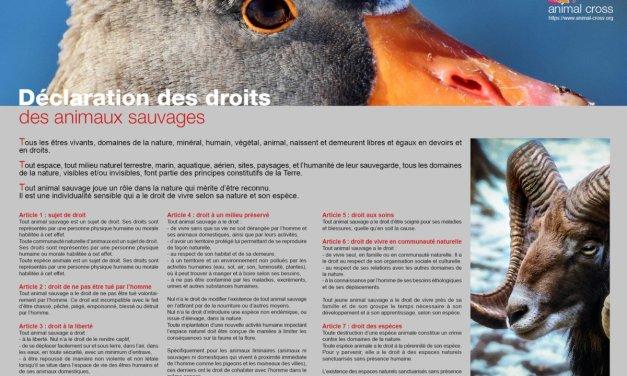 Déclaration des droits des animaux sauvages