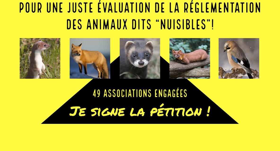 49 associations de protection de la nature et des animaux demandent au Ministère de l'écologie un audit sur la réglementation des animaux susceptibles d'occasionner des dégâts (ex nuisibles)