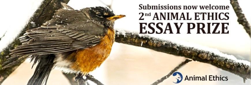 2nd Animal Ethics Essay Prize