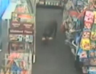 ペットフードを盗んだ犯人は3本足のワンコだったペットフードを盗んだ犯人は3本足のワンコだった
