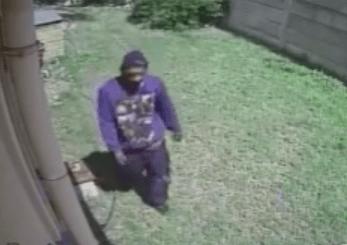 防犯カメラが強盗を追い払った猛犬を録画