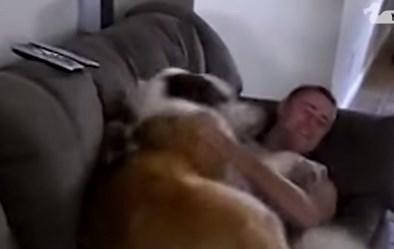 大型犬を飼うのは大変だけど…これを見たら欲しくなる!?
