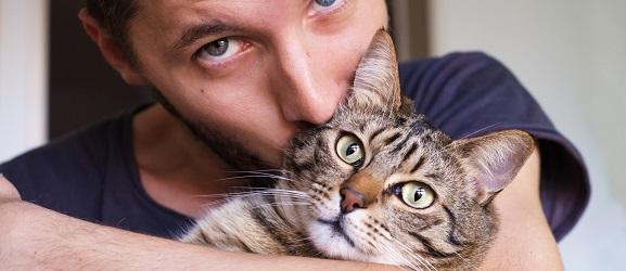 Animalcity.gr - Συχνά λάθοι  των ιδιοκτητών γάτας