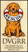 DVGGR-Logo