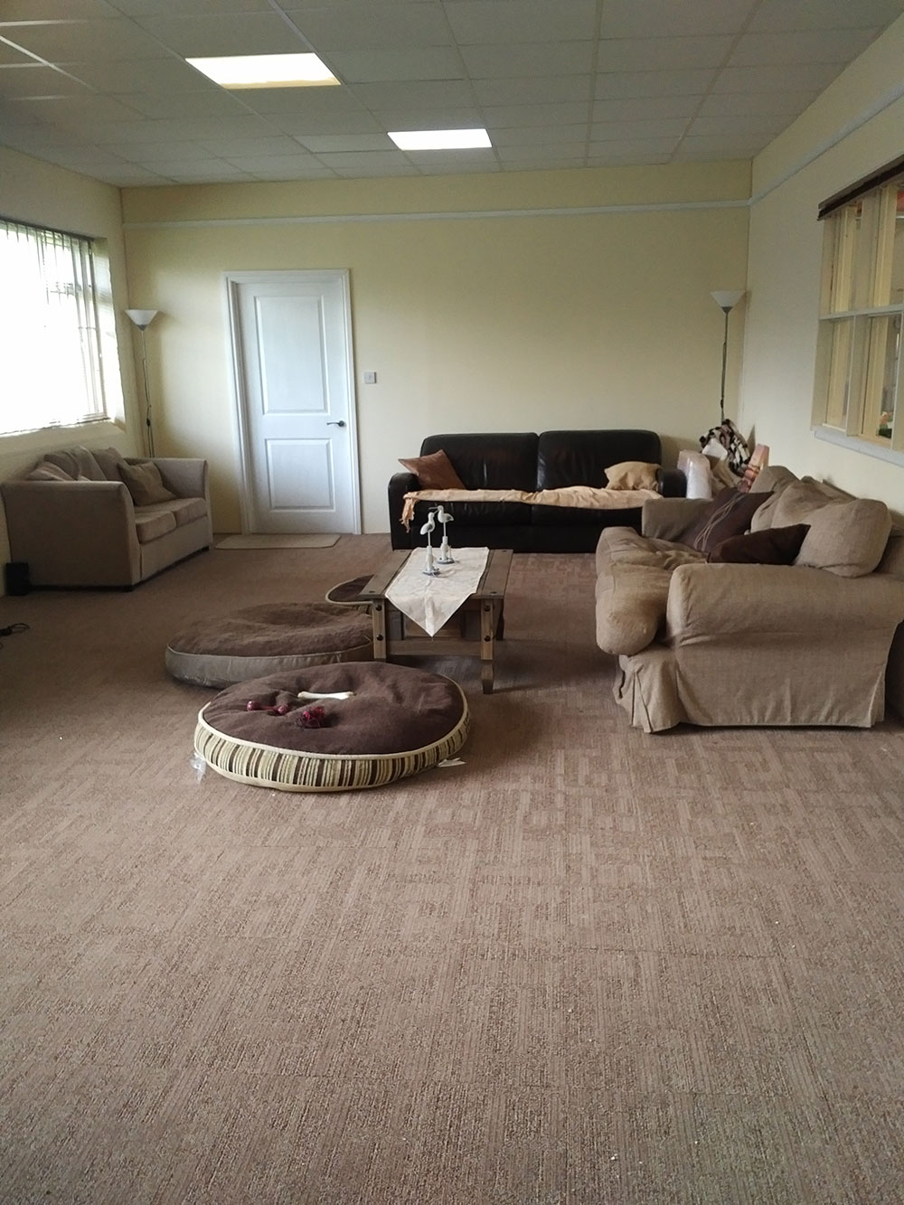 Home boarders have a house to live in which is built into the back of the main exercise area — this is the sitting room