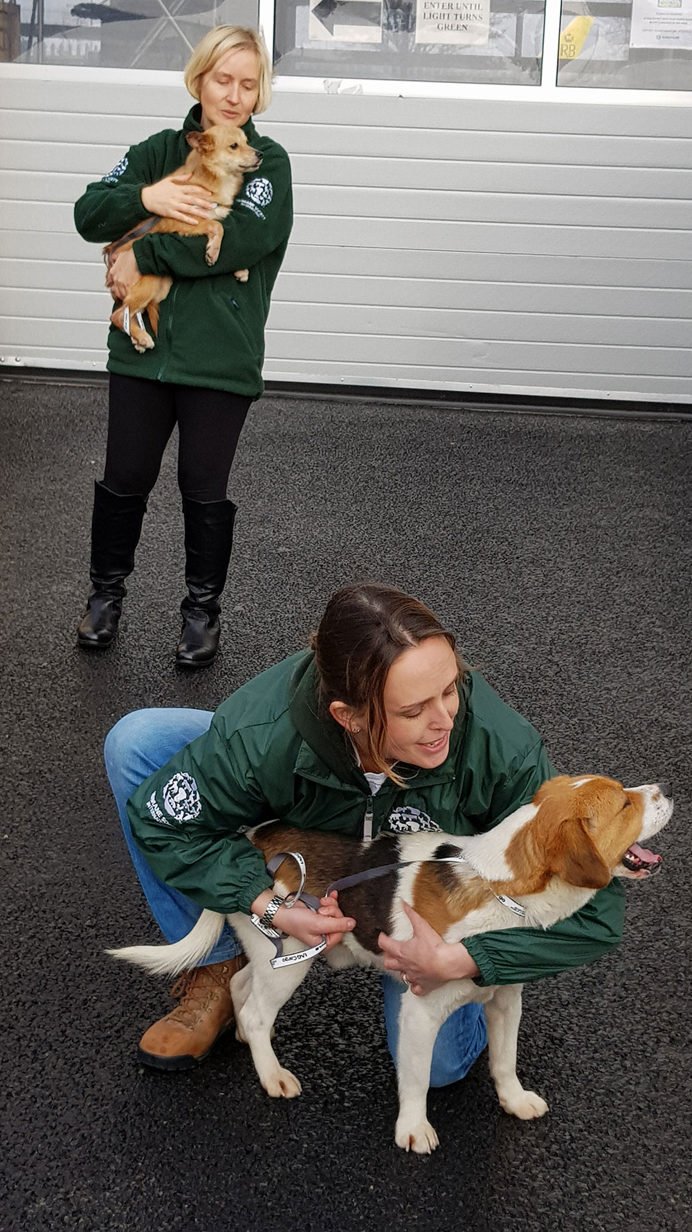 The HSI team delighted to see the dogs again