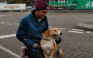 channel hopping: Simon and Mylo happily reunited at the port in Holyhead, Wales. (Mylo is positively grinning!) They made the onward journey to Ireland by ferry as foot (paw?) passengers.