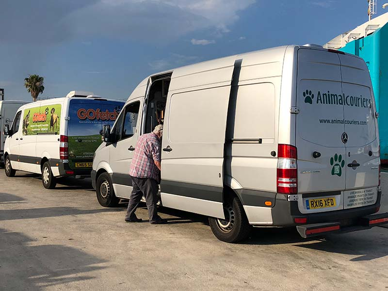 Animalcouriers and GoFetch vans