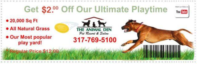 dog-daycare-coupon