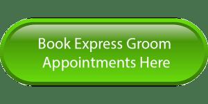 book-express-green
