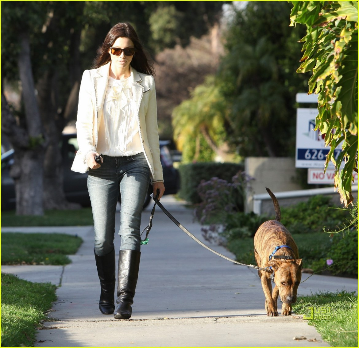 Jessica Biel takes her dog for a walk.