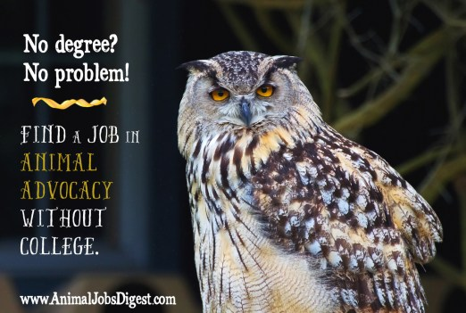 No Degree? No Problem! Find a Job in Animal Advocacy Without