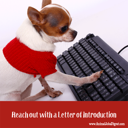 Letter of introduction - Use LOI to find animal welfare job