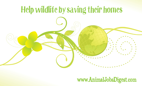 Help wildlife by saving their homes - EO Wilson Half-Earth book