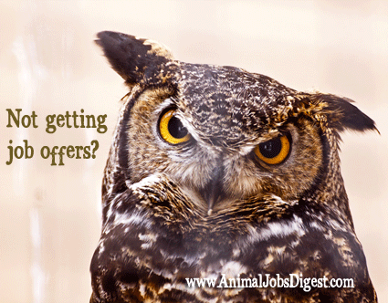 Owl - get job offers from animal organizations