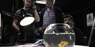 Produttore, regista e stagista con pesce