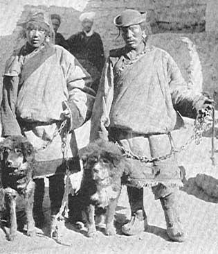 Antica foto di un tibetan Mastiff con nomadi locali