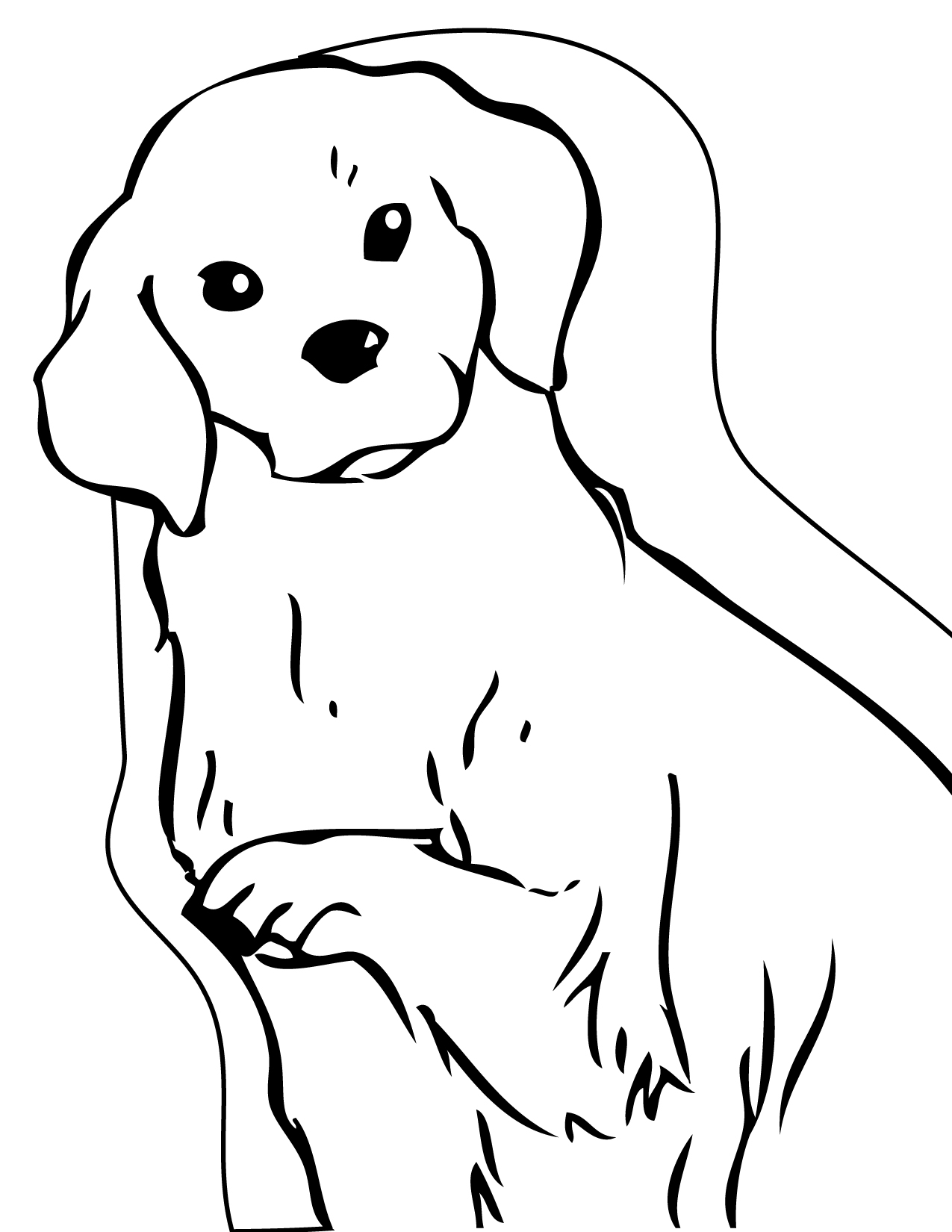 Coloring Pages Animal Place