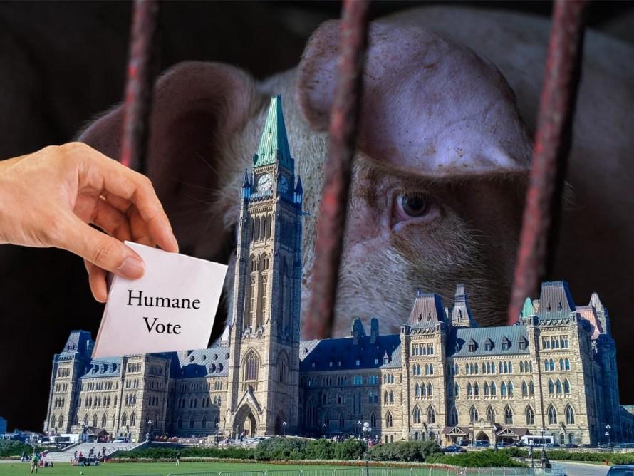 Humane Voters