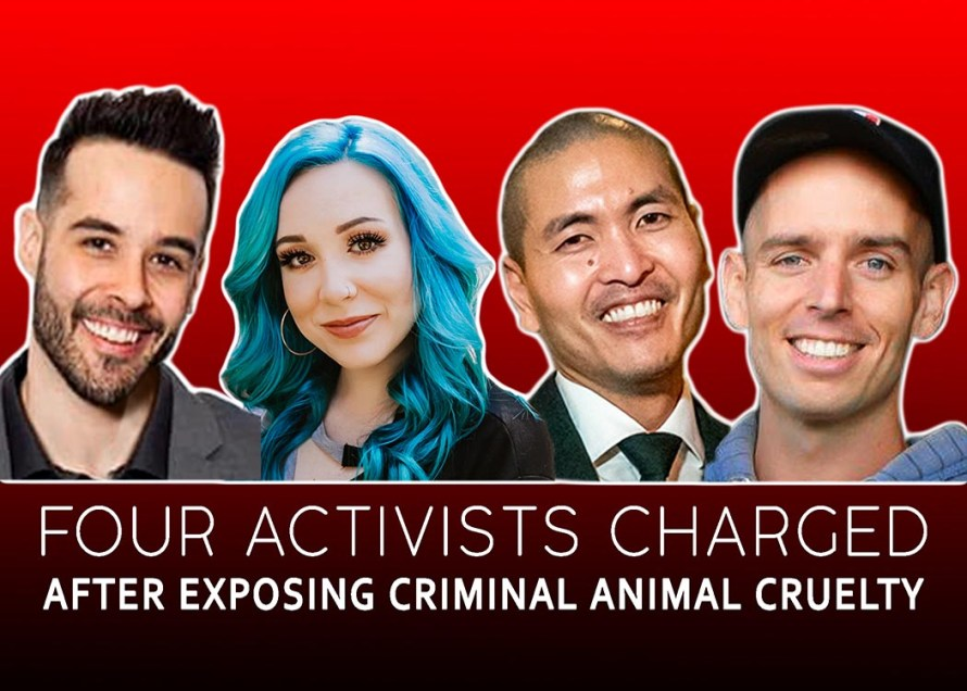 activists charged