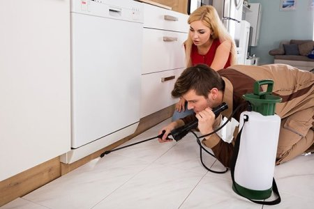 If you want to know about us then understand Safety remains our number one concern when spraying for insects inside your home.