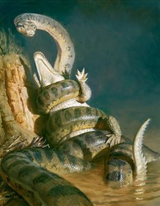 Titanoboa vs. giant crocodile. (Smithsonian Institution image)