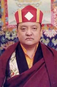 Shamar Rinpoche Mipham Chokyi Lodro