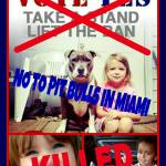 PETA takes a stand for Miami-Dade pit bull ban