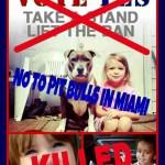 PETA takes a stand for Miami-Dade pit bull ban