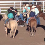 Exposing sadism of rodeo attracts more sadists to watch it