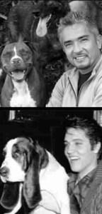 Elvis preferred hound dogs.