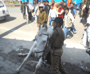 Rider tries to help Shaktiman.