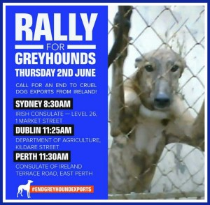 End Greyhound Exports poster. (Animals Australia)