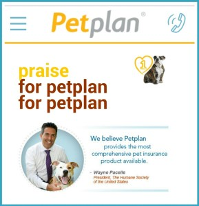 Wayne Pacelle sells pet health insurance, but not liability insurance.