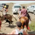 Standing Rock:  Who let the dogs out?
