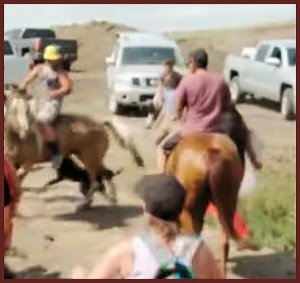 "Unleashed ""security dog"" bites horse. (From Facebook video.)"
