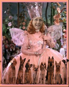 Ruth Steinberger as The Good Witch of SpayFirst! (Beth Clifton collage)