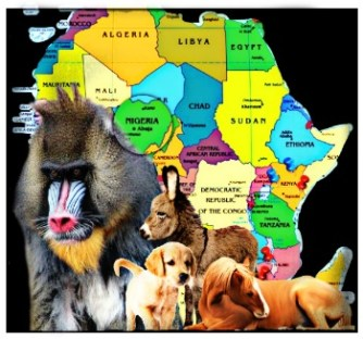 African map with Nigeria and mandrill