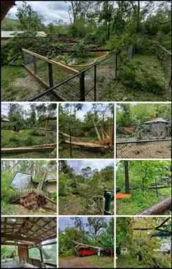 Alexandria Zoo Hurricane Laura